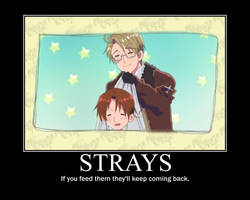 Strays Poster by UlquiorraJaggerjack