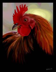 Chicken Vector by curfubles