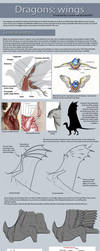 Dragon tutorial: Wings by Lucie-P