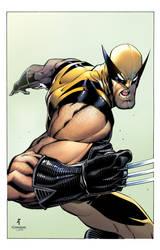John Timms/Tim Townsend Wolverine Colors by DavidCuriel