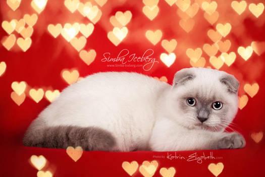 Happy Valentine's Day! by Katrin-Elizabeth