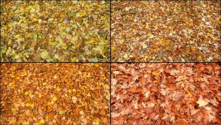 Autumn spirit by Spiiiidy