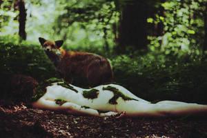 fairy tale II by laura-makabresku