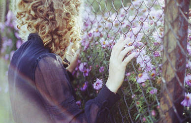 summer is gone by laura-makabresku
