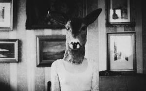 dark-room by laura-makabresku