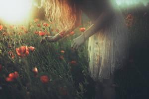 silent evenings by laura-makabresku