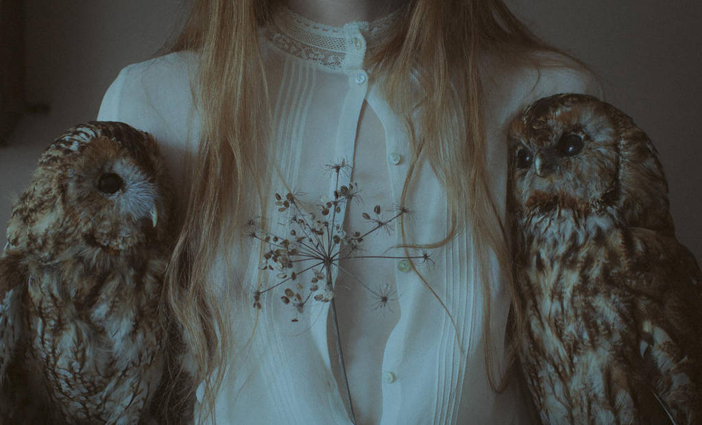 Owls by laura-makabresku