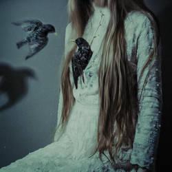 Heart by laura-makabresku