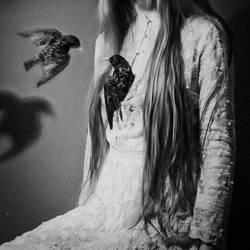 Birds by laura-makabresku