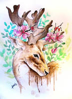 Watercolor deer by PoisonIky