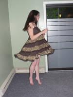 Brown Dress 5 by B-SquaredStock