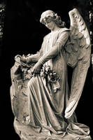 Angel Of Lost Souls by doomed-forever