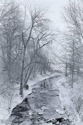 The Winter Stream II by doomed-forever