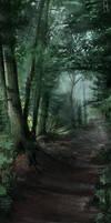 DSA: Waldweg by Ranarh