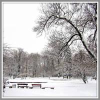 White Silence by Aivaseda