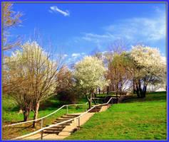 Memories of spring by Aivaseda