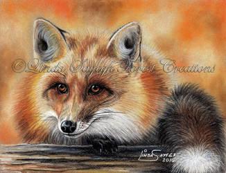Fire Fox by Artsy50