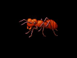 Ant by phanxgames