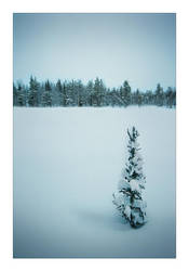 Stillness by Solkku