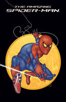 Amazing Spider Man by felipef777
