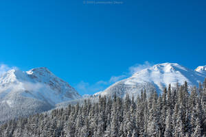 Cold Morning In The Mountains III by Lumimyrskydawn
