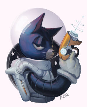 SPACE CAT by P-cate