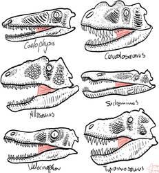 Theropods heads by Slugozaur