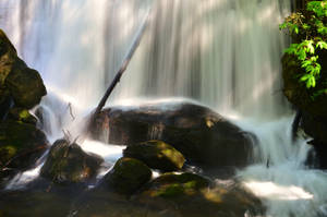 Whatcom Falls Park-26Apr2016-010 by SkyfireDragon