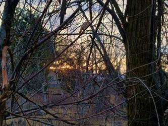 Dawn Atangled by SkyfireDragon
