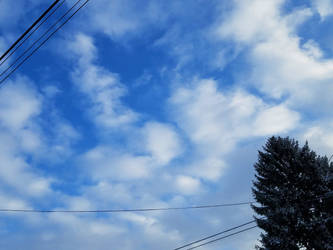 Bellingham Winter-12Feb2018-S09 by SkyfireDragon