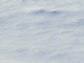 Bellingham Winter-12Feb2018-S15 by SkyfireDragon