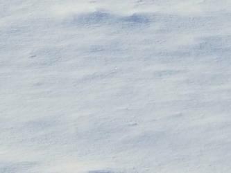 Bellingham Winter-12Feb2018-S16 by SkyfireDragon