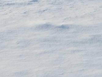 Bellingham Winter-12Feb2018-S17 by SkyfireDragon