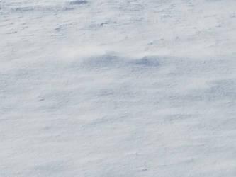 Bellingham Winter-12Feb2018-S18 by SkyfireDragon