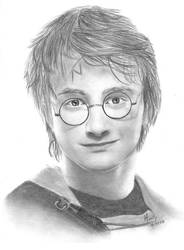 Harry Potter - Goblet of Fire by Mirally