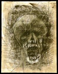 skull II by apechute