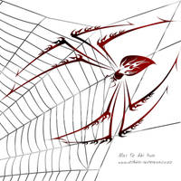 Tribal Spider by DragonAotearoa