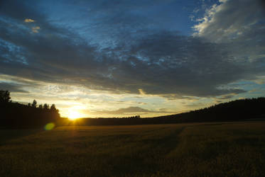 Sunset over a field by elgregorPL