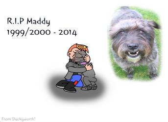 RIP Maddy by Duckyworth