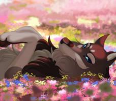 DotW: Wildflower by Arcadiasa
