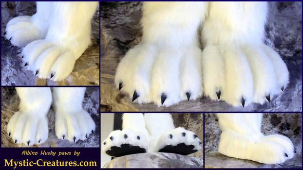 albinohuskypawsHD by Mystic-Creatures