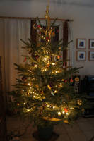 2010 Christmas tree by ZeFrenchM
