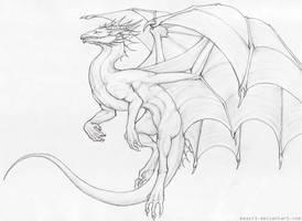 Dragon by Beast3