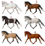 Realistic horse adoptables | 2/6 available by Koekeldoedeltje