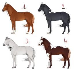 Realistic horse adoptables | 4/4 available by Koekeldoedeltje