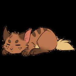 Not so frisky cat by Alcira