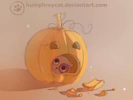 test pumpkin by humphreycat