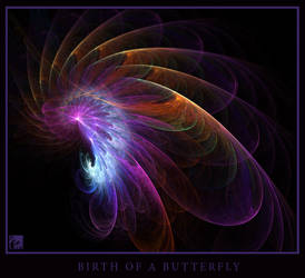 Birth of a Butterfly by Intervain