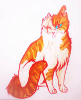 Brightheart - Warriors by NeoSkejd