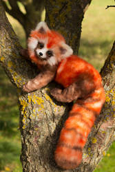 100 % handmade fire ferret Pabu by JulyGass